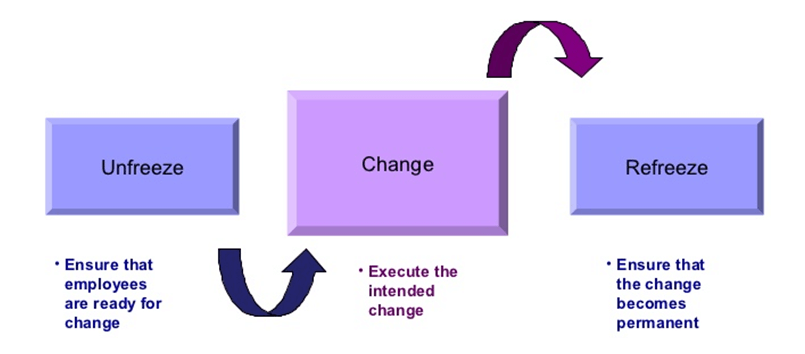Understanding and Leading Change